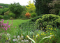 jardin 7