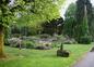 jardin 3