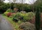 jardin en automne