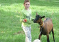 les animaux : chaya et uxem