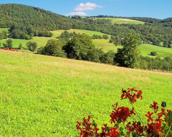 G te gites la ferme avec piscine chauff e gite piscine for Auvergne gites avec piscine