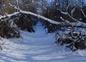 Sentier de randonnée sous la neige