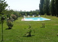 Vue de la piscine sur la terrasse